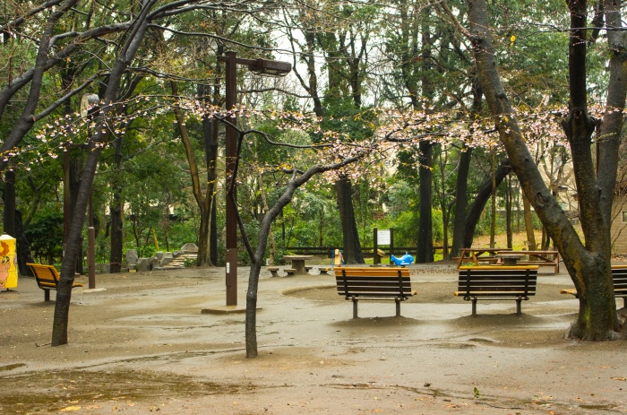 Part of the Hayashi Forest Park in Meguro, close to Musashi-Koyama station. Visited on my first day in Japan