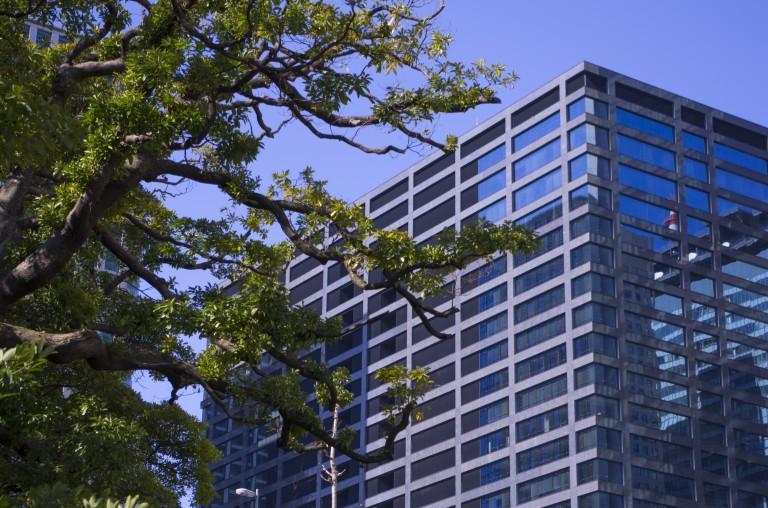 One of the tall buildings close to Hamarikyu Gardens