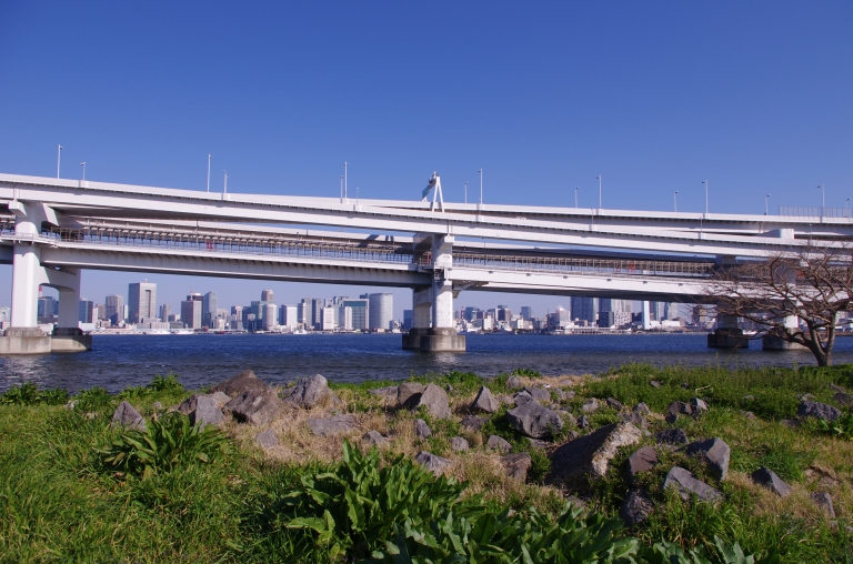 Rainbow Bridge and Tokyo in the background as seen from Daiba Park