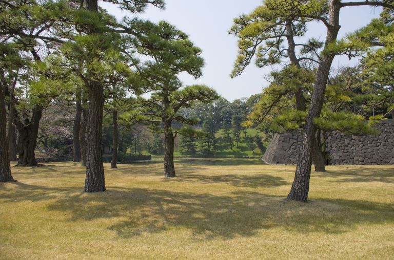 Somewhere around the Imperial Palace in Chiyoda