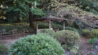Wooden shelter from Makoto Shinkai's Garden of Words anime movie