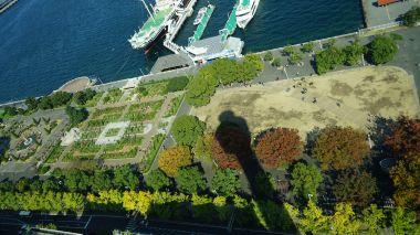 Yamashita Park from Marine Tower